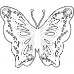 Sleek Designs - Medium Flourish Butterfly